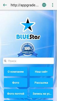 Компания BLUEStar screenshot 4