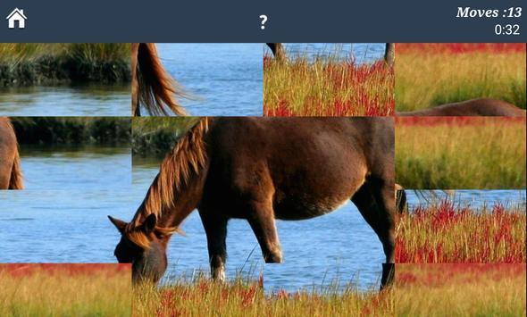 Horse Puzzles Free apk screenshot