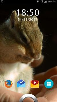 Hamster Live Wallpaper apk screenshot