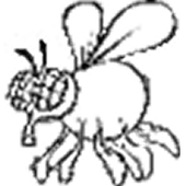 Virtual Fly icon