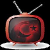Canlı TV X icon