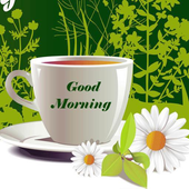 Good Morning Wishes WallPapers 2018 icon