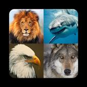 Animal and Birds Multilanguage icon