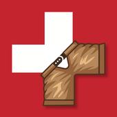 Schwinger icon