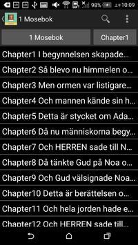 Swedish English Bible poster