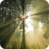 Daniel Csoka Photography icon