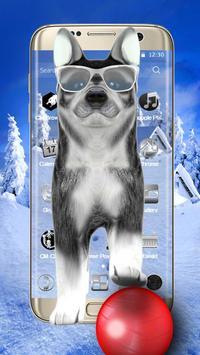3D Cute Husky Theme poster
