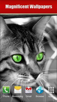 Cats screenshot 12
