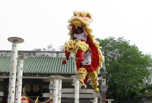 Chinese Lion Dance Wallpapers apk screenshot