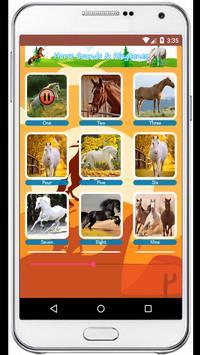 Horse Sounds Ringtones screenshot 4