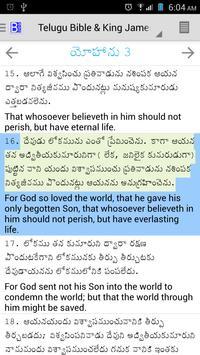 Telugu Bible Plus Ekran Görüntüsü 1