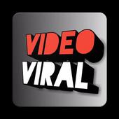 Viralvideo Tube icon