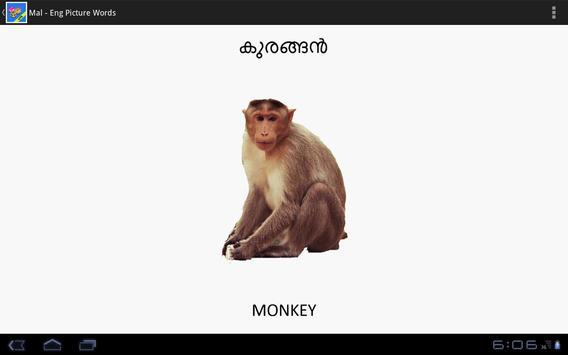 Malayalam-English PictureWords apk screenshot