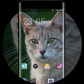 Theme for Intex Cloud 4G Smart Cat Wallpaper icon