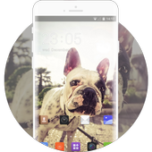 Theme for Intex Aqua Y3 bulldog Wallpaper icon
