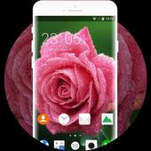 Theme for Intex Killer Rose Wallpaper icon