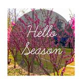 Hello Season icon