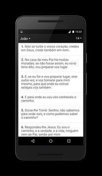 Bíblia Almeida Ferreira apk screenshot