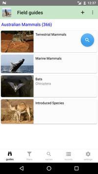 Australian Mammals 海报