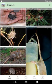 Australian Mammals 截图 12