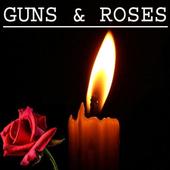 Gun n Roses Hits - Mp3 icon