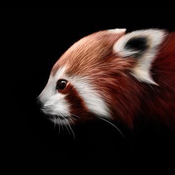 RED PANDA Wallpapers v1 screenshot 6