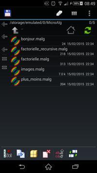 MicroAlg screenshot 1