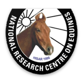 Infoequine by ICAR-NRCE (Unreleased) icon