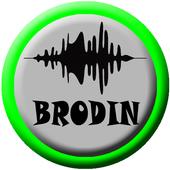Lagu Dangdut Brodin icon