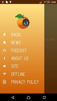 Orange Radio screenshot 1