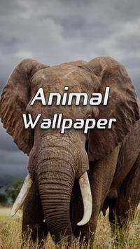 Animal Wallpapers poster