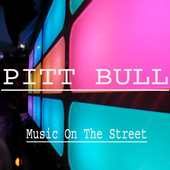 Pitbull Hits - Mp3 icon