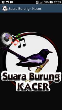Suara Burung Kacer poster