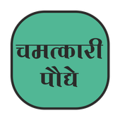 Chamtkari Paudhe icon