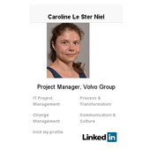 Caroline Le Ster Niel CV icon