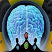 Brain Fusion Videogames icon