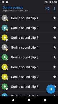 Appp.io - Gorilla sounds poster