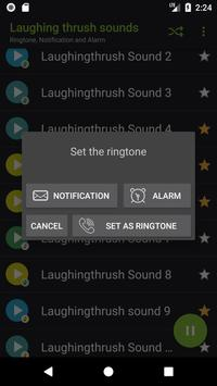 Appp.io - Laughing thrush sounds screenshot 2
