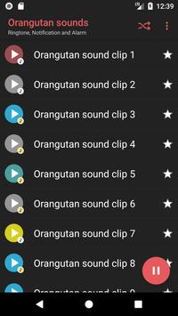 Appp.io - Orangutan sounds apk screenshot