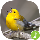 Appp.io - Warbler bird sounds icon