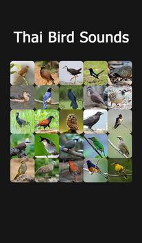 Appp.io - Thai Bird Sounds poster