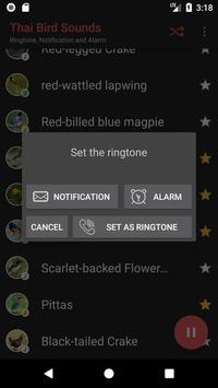 Appp.io - Thai Bird Sounds screenshot 3