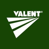 Valent icon