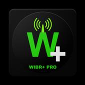 WIBR+ Pro-icoon