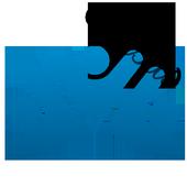 Sensus MF icon