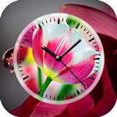 Tulips Clock Live Wallpaper icon