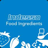 Indesso FI icon