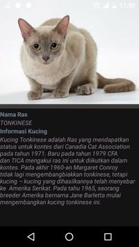 Kucing Item Putih screenshot 4