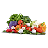 Healthy new recipes icon