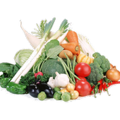Healthy nutritious recipes icon